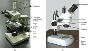 figure_03_02 pictures of microscopes