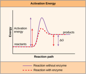 graph showing energy